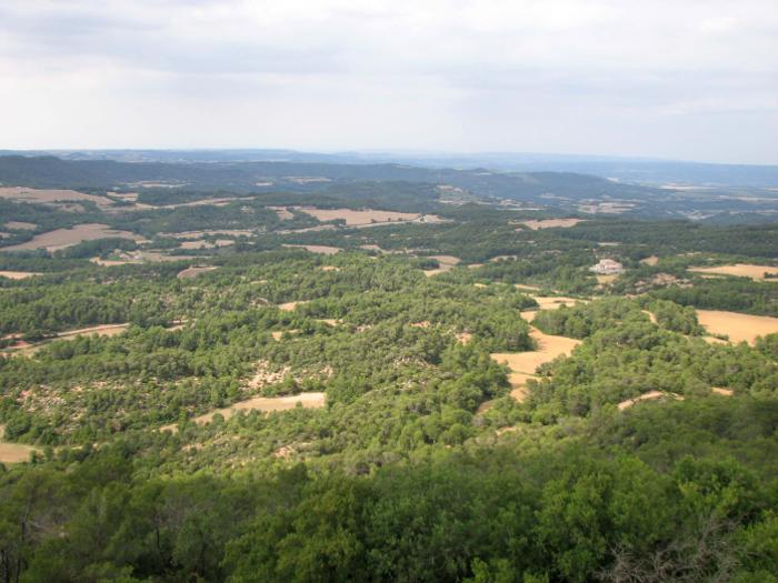 <p><strong>Unitat de Paisatge:</strong>Alt Gaià</p> <p><strong>Autor:</strong> Observatori del Paisatge de Catalunya</p> <p><strong>Crèdit:</strong> Arxiu d'imatges de l'Observatori del Paisatge de Catalunya</p> <p><strong>Reproducció:</strong> CC BY-NC-SA</p>  <a href='http://arxiu.catpaisatge.net/wp-content/uploads/2018/06/1-Alt-Gaia_1_Boscos-i-camps-a-la-zona-de-Bellprat.jpg'' class='download-button' download>Descarrega</a> <a href='http://arxiu.catpaisatge.net/cercador/?details.vm?q=id:0000005686' target='blank' class='fitxa-button' >Fitxa</a>