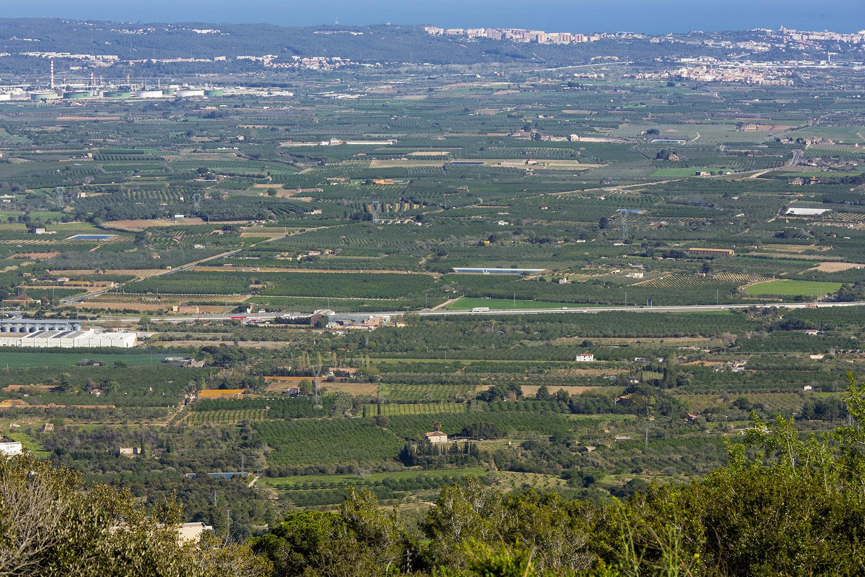 <p><strong>Unitat de Paisatge: </strong>Camps del Francolí</p> <p><strong>Mirador: </strong>Sant Pere del Puig</p> <p><strong>Autor:</strong> Jordi Salinas</p> <p><strong>Crèdit:</strong> Arxiu d'imatges de l'Observatori del Paisatge de Catalunya (Jordi Salinas)</p> <p><strong>Reproducció:</strong> CC BY-NC-SA</p>  <a href='http://arxiu.catpaisatge.net/wp-content/uploads/2018/08/25.jpg'' class='download-button' download>Descarrega</a> <a href='http://arxiu.catpaisatge.net/cercador/?details.vm?q=id:0000005808' target='blank' class='fitxa-button' >Fitxa</a>